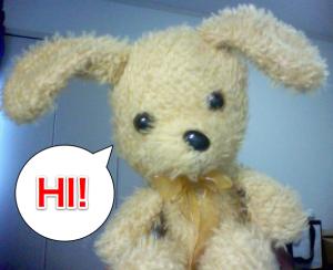 My Japanese Kindergarten assistant teacher...Bunny Sensei